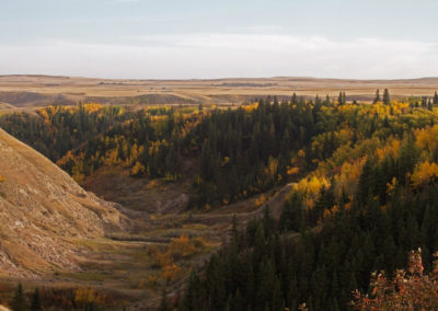 Rosebud River Valley autumn