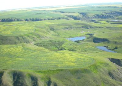 Wetlands full Wildlife Corridor View NE Appendix 18 Wildlife Corridor 067